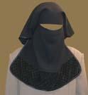 What lies behind the veil?