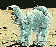 Space camel